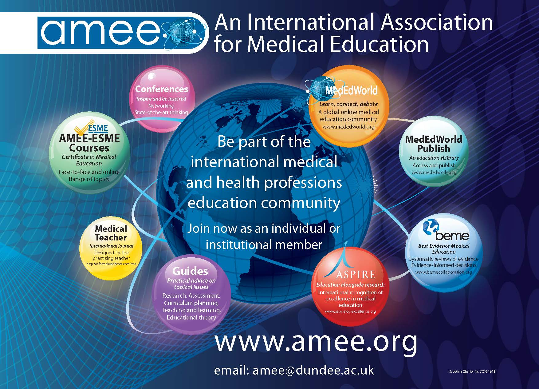 amee promotional flyer